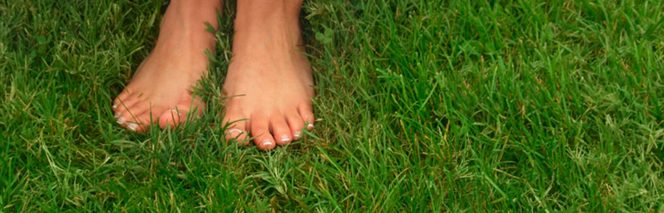 TOP 25 BARE FEET QUOTES | A-Z Quotes